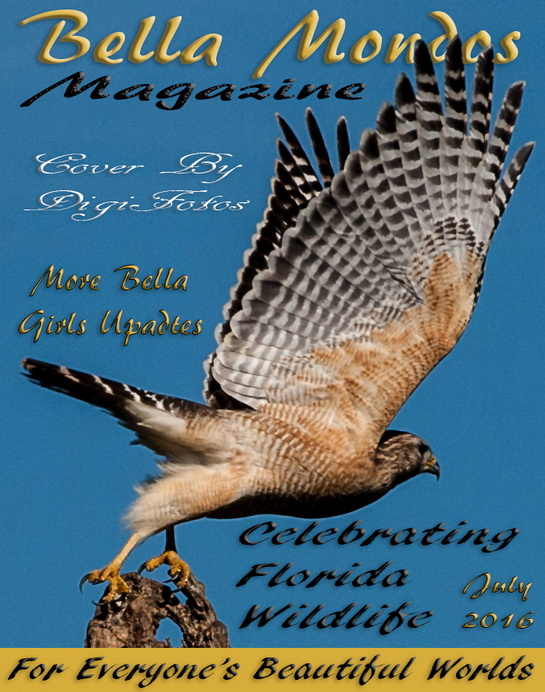 http://www.digifotosphotography.com/covers/cover_july16.jpg